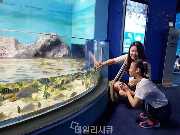 ▲ 안랩은 14일 서울 롯데월드 아쿠아리움에서 임직원 감성지능 교육 프로그램 '1℃'의 일환으로 지적 장애 아동 및 청소년들과 '아쿠아리움 나들이' 활동을 진행했다.