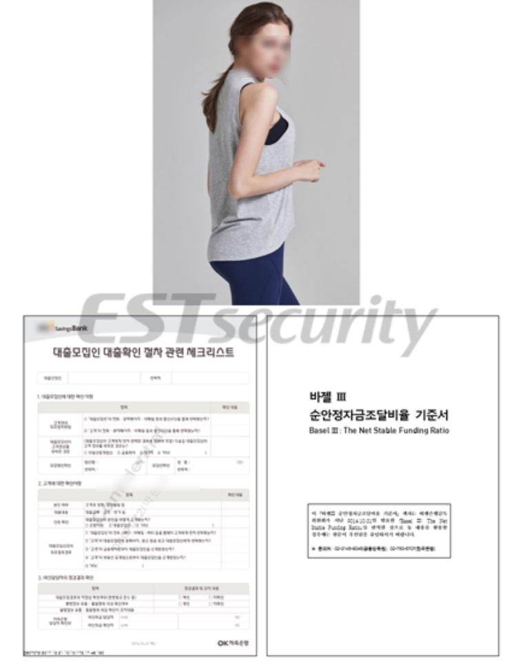 ▲ 악성 파일 실행시 보여지는 정상 문서와 이미지 사진