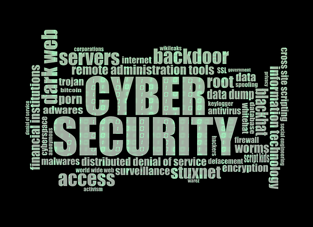 cyber-security-1805632_640.png