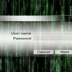 비밀번호 도둑에 대한 온라인 응징
