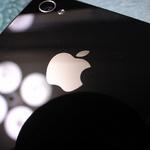애플 Secure Enclave 펌웨어 암호 해독 키 공개돼