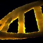 DNA 나노 기술의 새로운 발견, ss 종이접기