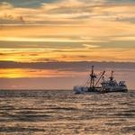 빅데이터 부재로 인해 불법 어업 규제 어려워