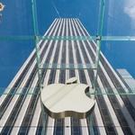 애플, 사이버 보안 및 보험 분야로 진출