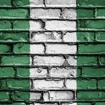 나이지리아, 나노 기술 개발위원회 출범