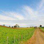 호주 농장들, IoT로 농장 운영 및 통제 본격 시행