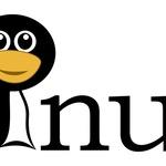 리눅스 결함, 악의적인 DNS 쿼리로 도용된다