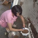 '구조신호, 시그널', 수십억 원 상속받은 여인의 70여 마리 고양이들과의 기이한 동거