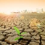 빅데이터, 가뭄 보험에 활용된다