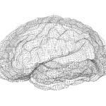 [유해사이트차단 솔루션의 두뇌-웹 데이터베이스①] 어제 생긴 도박사이트, 어떻게 알고 차단한 거야?